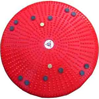Acupressure Twister Body Weight Reducer CODE:Dl-8366