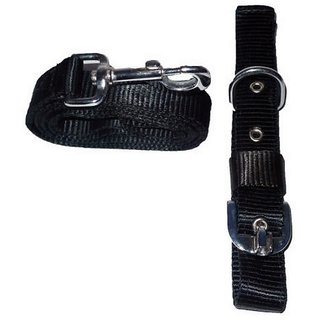 Pet Club51 HIGH QUALITY STYLISH DOG COLLAR AND LEASH WITHOUT PADDING 1.25 BLAC