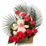 FLABERRY - TEDDY WITH CARNATIONS