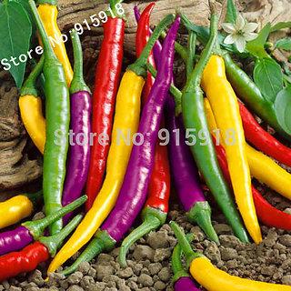Seeds-Vegetables Pepper Organic Cayenne Pepper Blend ,