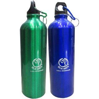 Blue Birds Stainless Steel 750 ml Water Bottles
