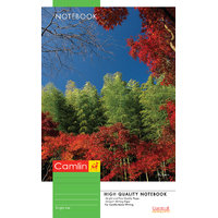Camlin Extra Long Notebook - Soft Cover, 72 Pages, Single Line (pack of 12)