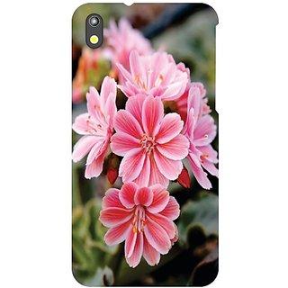 HTC Desire 816 G View Of Flower