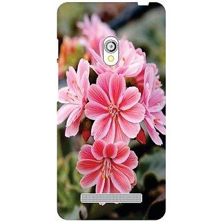 Asus Zenfone 5 View Of Flower