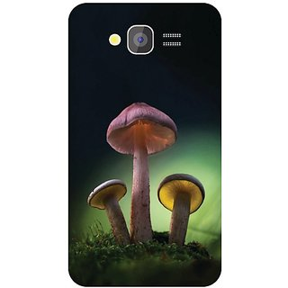 Samsung Galaxy Grand Adorable