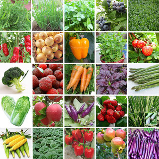 Seeds-48 Types Survival Heirloom Vegetable Fruits Garden Organic Plant