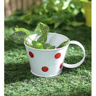 Polka Cups Small White