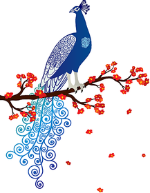 Asmi Collections PVC Wall Stickers Beautiful Peacock and Flowers An007