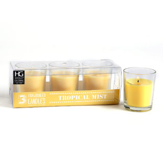 Set Of 3 Hosley Highly Fragranced Tropical Mist Filled Glass Candles