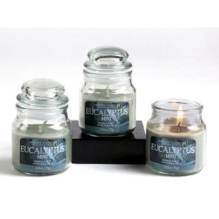 Set Of 3 Hosley Eucalyptus Mint Highly Fragranced Jar Candles