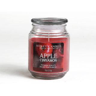 Hosley Apple Cinnamon Highly Fragranced, 18 Oz Wax, Large Jar Candle