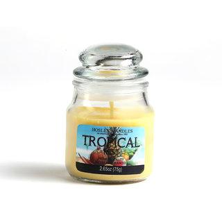 Hosley Tropical Mist Highly Fragranced Jar Candle