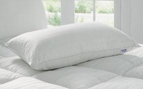 Story @ Home White Premium Quality Pillows (16X24) - Set of 1 - PW1401