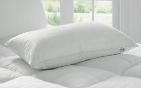 Story @ Home White Premium Quality Pillows (Pw1401)