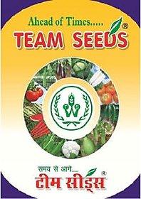 Seeds-Vegetable Kit 7 Varities-2