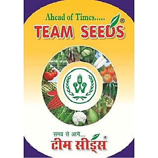 Seeds-Vegetable Kit 7 Varities-2