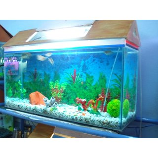 Buy royal deluxe fish aquarium online get 0 off for Fish tank top cover