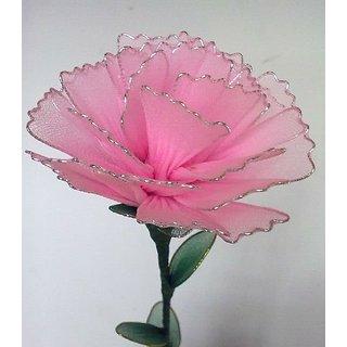 Beautiful Stocking Rose Flower Pink