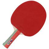 GKI Kung-Fu Dx Table Tennis Racket