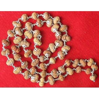 14 Mukhi Javanese Rudraksha Mala / Mahabali Hanuman Mala 54 + 1 beads