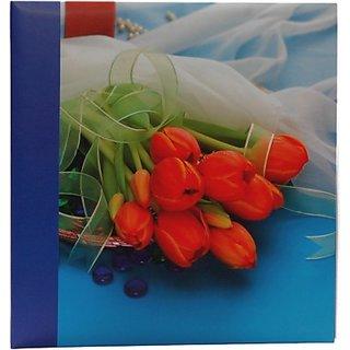 Natraj 200 Pocket 5 X 7 inch Album(Photo Size Supported 5 X 7 inch)