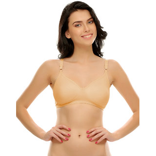 Cotton Rich Full Support Plus Size T-Shirt Bras  (BRF184A24)