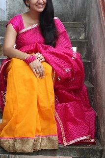 Anu Designs Pink & Yellow Organza Printed Saree With Blouse