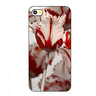 Instyler Premium Digital Printed 3D Back Cover For Apple I Phone 5 3DIP5DS-10267