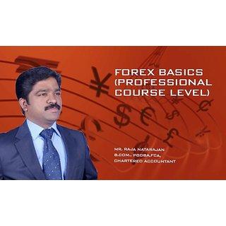 Forex Basics (Professional Course Level)