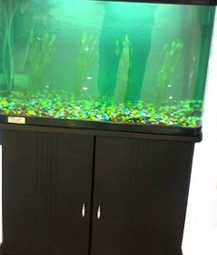 R S Electrical Green N Brown Glass Fish Tank  Top Cover with Free Wooden Table,