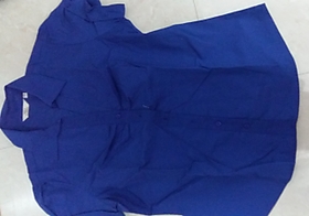 Blue Ladies Formal Shirt
