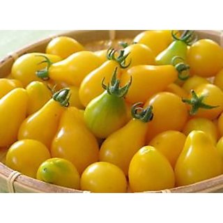 Seeds-Yellow Pear Tomato (Vegetable )