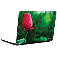Pics And You Blossom In Vogue 3M/Avery Vinyl Laptop Skin Sticker Decal- FL073