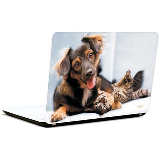 Pics And You Got You Kitty 3M/Avery Vinyl Laptop Skin Decal-FN009