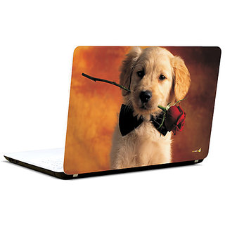 Pics And You Will You Date Me 3M/Avery Vinyl Laptop Skin Decal-FN017
