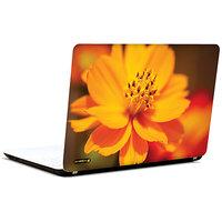 Pics And You Orange Glory 3M/Avery Vinyl Laptop Skin Sticker Decal - FL012