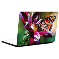 Pics And You Sun Kissed 3M/Avery Vinyl Laptop Skin Sticker Decal - FL047
