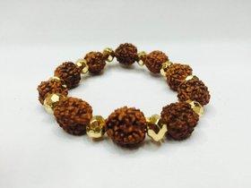 5 Mukhi  Rudraksha Bracelet with Golden