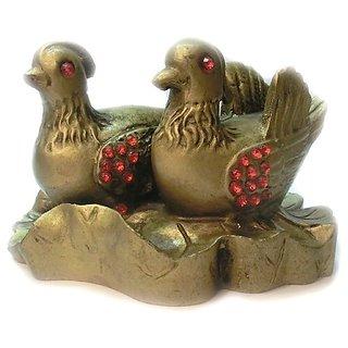 Raashi Mandarin ducks