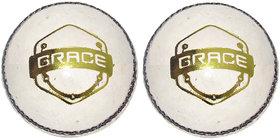 Brawn Brace Cricket Ball (2 Balls)