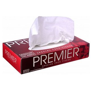 Premier Face Tissue 100 Pulls 2 Ply Box 4x2 Pack