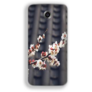 Mott2 Back Cover For Google Nexus 6 Nexus-6-Hs05 (165) -22116