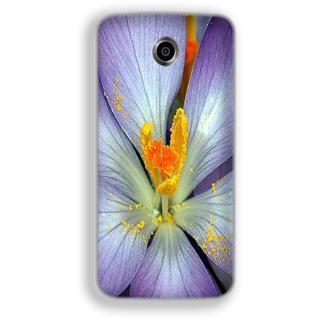 Mott2 Back Cover For Google Nexus 6 Nexus-6-Hs05 (105) -30197