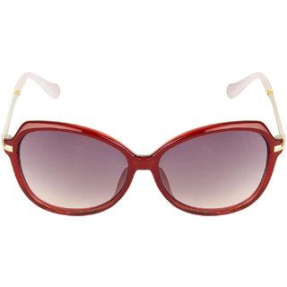 Danny Daze Over-Sized D-254-C4 Sunglasses