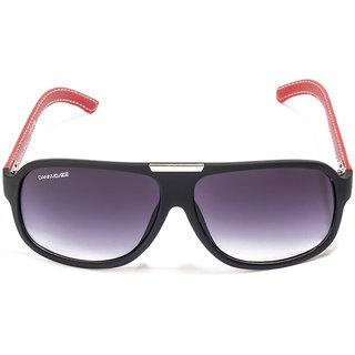 Danny Daze Wayfarer D-300-C2 Sunglasses