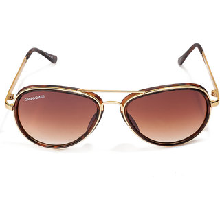 Danny Daze Aviators D-75-C4 Sunglasses