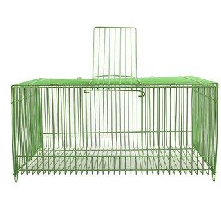 Bird Spot Bird Transport cage - LxBxH- 11x7x5.5 Inches