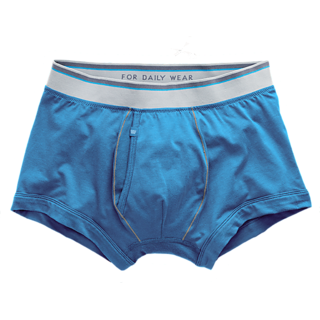 Hanes Mens Cotton Briefs colour blue