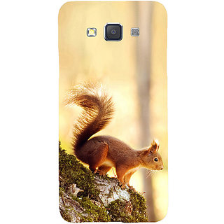 Casotec Squirrel Design Hard Back Case Cover For Samsung Galaxy A5