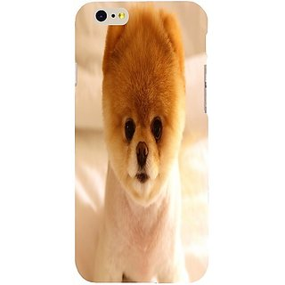 Casotec Dog Boo Design Hard Back Case Cover For Apple Iphone Se gz8161-13025